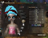 GW2_Total makeover kit